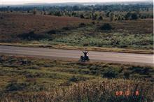 なすこぐまさんのFZR400R 左サイド画像