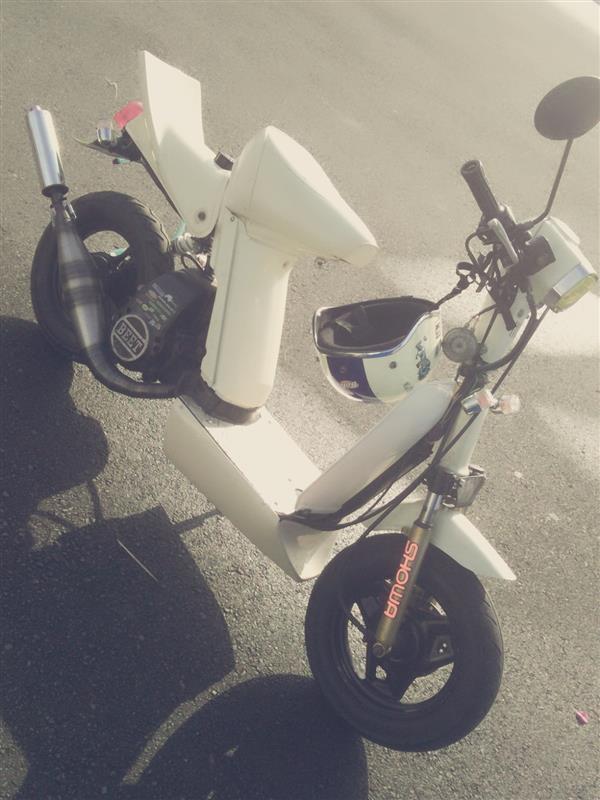 タヌタヌさんのパッジョグ80