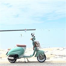 Kukurさんのベロチフェロ メイン画像