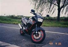 モチネコさんのGPX250R-2 メイン画像