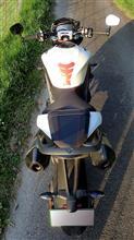 器≪Utsuwa≫さんのスピードトリプル RS リア画像