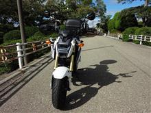 バイク君さんのGROM メイン画像