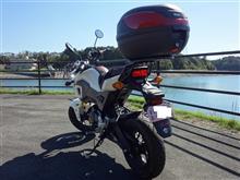 バイク君さんのGROM リア画像