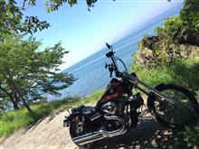 harley_fxdwgさんのFXDWG_DINA_WideGlide