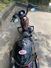 VolvoxさんのXL1200NS/アイアン1200 リア画像
