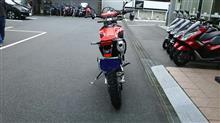 コスマさんのCRF450L リア画像
