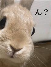 τακεーρ☆さんのCIVIC_HATCHBACK