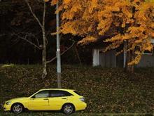 星昇さんの愛車:トヨタ アルテッツァジータ