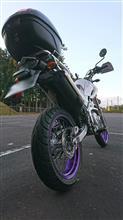 紫電怪さんのXT250X リア画像