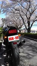 高幡 ≡ HooliGaN ≡ HRさんのザンザス メイン画像