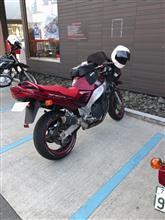 ねちゃいさんのRF900R 左サイド画像