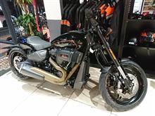 GT RiderさんのFXDR メイン画像