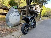 papasaburoさんのZ900 リア画像