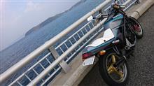 kazuki(*^^*)さんのVTZ250 リア画像