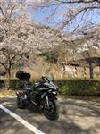 カワサキ Ninja H2 SX SE +