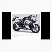 mana-worksさんのNinja250_ABS_Special_Edition