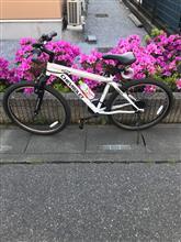 だいだいこんさんの折畳自転車 メイン画像