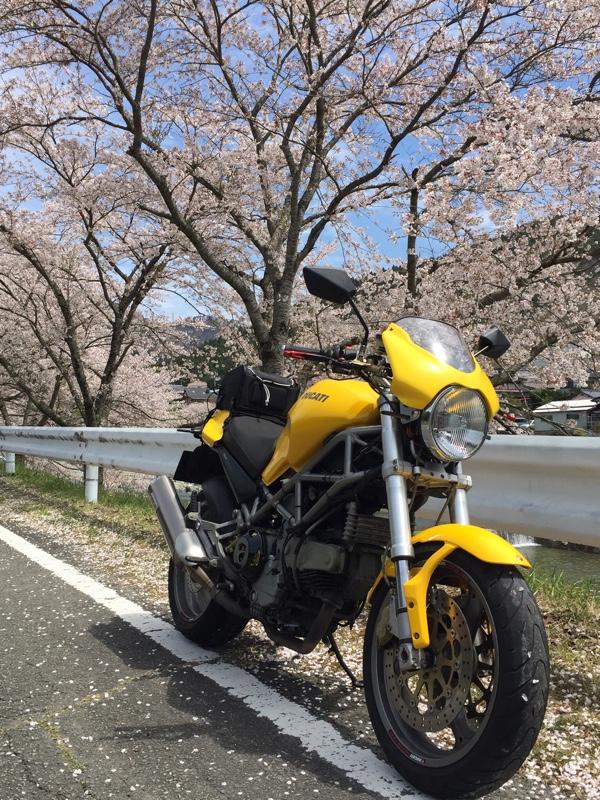 よっすぃーのガレージさんのモンスター900S