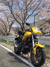 よっすぃーのガレージさんのモンスター900S メイン画像