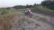 シルたん♪さんのDT200R