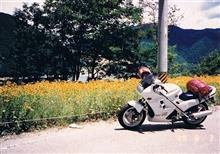 zuniさんのVFR750F メイン画像