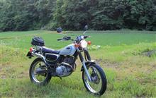 lonesome-riderさんのBRONCO メイン画像