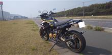Z31ワンカップさんのTDR250 リア画像