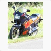Rider.Shunさんのrg250ガンマ ウオルターウルフ