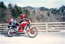 TTチェン太郎さんのXLV750R メイン画像