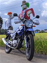 トヒサマさんのYBR125G メイン画像