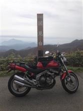 ナオジン55さんのFZX250 ZeaL (ジール) リア画像