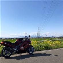 taka33rさんのZX-11 インテリア画像