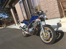 カチアオさんのSRX600 左サイド画像