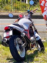 メカオンチSRXさんのSRX600 リア画像