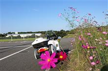 ヒサブサ★BMW X3 /K1200GTさんのR1150RT リア画像