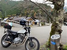 yoshi55cさんのグラストラッカー リア画像
