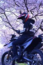 ミチ☆さんのSX125 メイン画像
