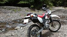 ShorinさんのXR250 MD30 リア画像