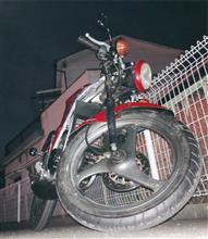 清山下水(seizankasui)さんのウルフ50 メイン画像