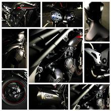 voodooさんのスピードトリプル RS リア画像