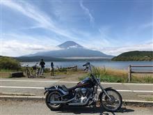 YozoraAsahiさんのFXST 左サイド画像
