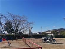 とし子さんのW400