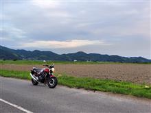 いけ ちゃんさんのCB400SF HYPER VTEC Revo (NC42) メイン画像