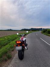 いけ ちゃんさんのCB400SF HYPER VTEC Revo (NC42) リア画像