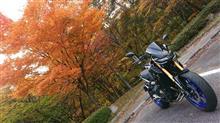 TOU-UCさんのMT-09 SP インテリア画像