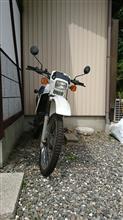 ラフ・コリーさんのMTX50R メイン画像