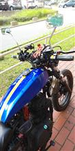 moto-z32さんのボルティ250 左サイド画像