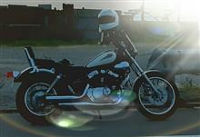 take4722さんのXV250 ビラーゴ 左サイド画像
