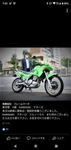 nakadayasushiさんの愛車:カワサキ KLE250 ANHELO (アネーロ)