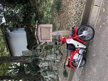 cycleyarouさんのスーパーカブ タイプX125 左サイド画像